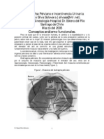 Patologia_piso_pelvico