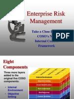 Enterprise Risk Mgmt