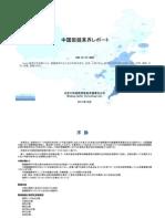 中国製鏡業界レポート - Sample Pages