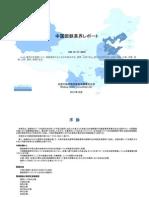 中国製鉄業界レポート - Sample Pages