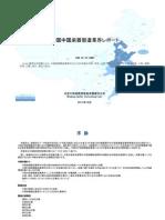 中国中国楽器製造業界レポート - Sample Pages