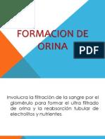 FORMACION DE ORINA