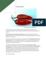 Beneficios del ají picante
