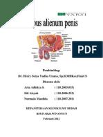 Corpus Alienum Penis
