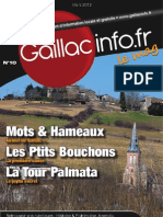 Gaillacinfo Le Mag n°10 - Mars 2012