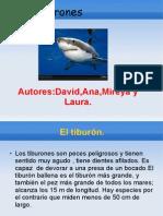 Los Tiburones