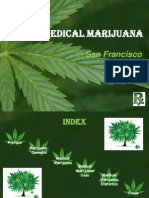 Medical Marijuana in San Francisco