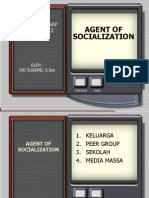 Agent of Socialization