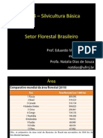 Setor_Florestal_Brasileiro (1)