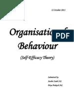 Self Efficacy Theory -HC