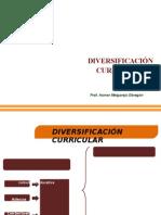 diversificacion 2011