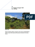 2011 Clouds of August Mercanta Microlot