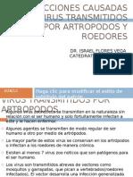 Infecciones Causadas Por Virus dos Por Artropodos y