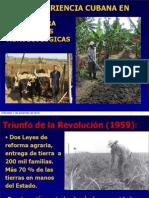 Experiencia Agroecología en Cuba