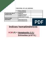 Clasificacion Funcional de Las Anemias 290811