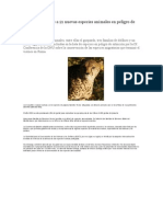 21sps Animales Peligro de Extinción
