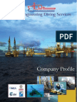 Company Profile MEDS