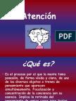 psicologia - Atención