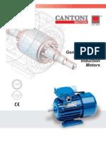 1 Phase 2010 Cantoni Motor