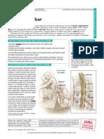 PDF Pat 102506