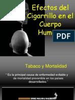 Efectos Del Cigarrillo