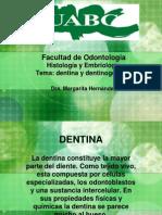 dentina y dentinogenesis