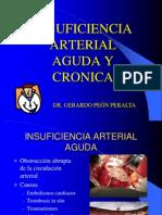 insuficiencia arterial aguda y crónica