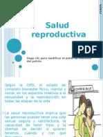 Salud Reproductiva(2)