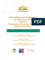 Guía de propagación de especies vegetales nativas y endémicas CIMM