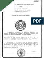Cmc 1991 Tratado Es Asuncion
