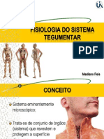 Fisiologia Do Sistema Tegumentar