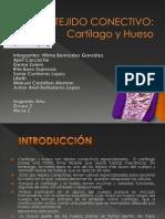 Tejido cartilaginoso (2)