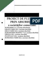 Proiect de fuziune
