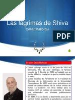 Las Lc3a1grimas de Shiva