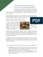 Sistemas de Produccion Bovina en Las Americas
