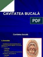 CURS 7 CAVITATEA BUCALĂ