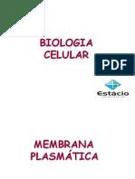 Bio -2012- aula 2