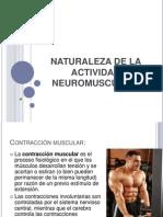 Naturaleza de La Actividad Neuromuscular