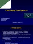 embriologiadigestiva-110509203915-phpapp02