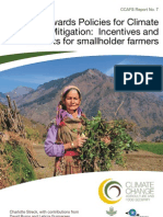 Towards Policies for Climate Change Mitigation