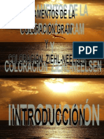 coloración gram