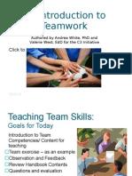 Team Skills Training