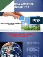 Primera Actividad Complement Aria Gerencia Ambiental Carlos Julio Pineda Granados c 0104350