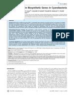Origin of Saxitoxin Bio Synthetic Genes in Cyanobacteria