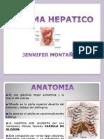 sist hepatico