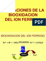 seminario biooxidaci%f3n