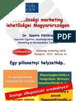 KE Szente Viktória - A közösségi marketing lehetőségei Magyarországon