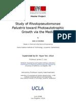 Master Project - Study of Rhodopseudomonas Palustris Toward Photoautotrophic Growth via the Media