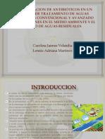 Presentacion Biorremediacion Carolina-lennix