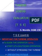 Turbine Stress Evaluator